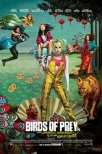 Birds of Prey: And the Fantabulous Emancipation of One Harley Quinn 123movies