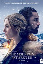 The Mountain Between Us 123movies.online