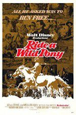 Ride a Wild Pony 123movies