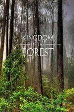National Geographic Kingdom of the Forest 123movies