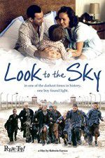 Look to the Sky 123moviess.online