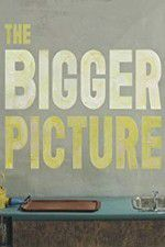 The Bigger Picture 123movies