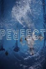 Perfect 123moviess.online