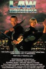 Martial Law II: Undercover 123movies