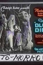 The Blue Bird 123moviess.online
