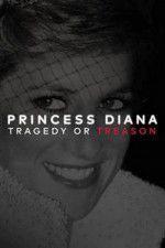 Princess Diana: Tragedy or Treason? 123movies.online
