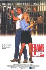 Frame Up 123movies
