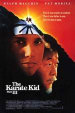 The Karate Kid, Part III 123movies