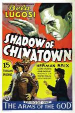 Oglądaj Shadow of Chinatown 123movies