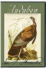 Audubon 123movies