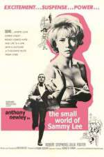 The Small World of Sammy Lee 123movies