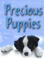 Precious Puppies 123movies