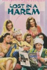 Lost in a Harem 123movies