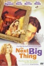 The Next Big Thing 123movies