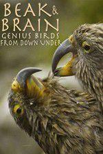 Beak & Brain - Genius Birds from Down Under 123movies