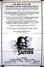 The Great Santini 123movies