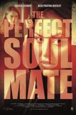 The Perfect Soulmate 123movies