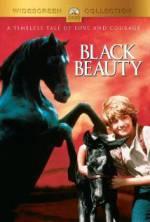 Black Beauty 123movies