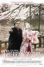 Cherry Blossoms 123movies
