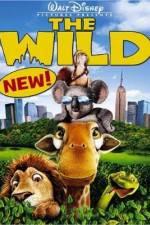 The Wild 123movies