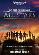 the challenge: all stars tv poster