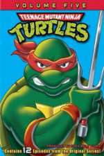 Teenage Mutant Ninja Turtles 123movies