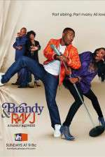 Brandy and Ray J: A Family Business 123movies