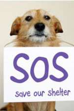 Save Our Shelter 123movies