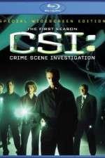 CSI: Crime Scene Investigation 123movies