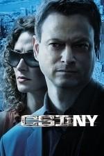 CSI: NY / New York 123movies