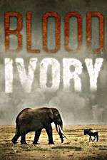 Blood Ivory 123movies