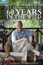 Attenborough 60 Years in the Wild 123movies