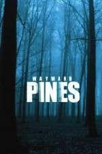 Wayward Pines 123movies