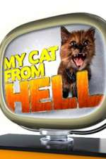 My Cat from Hell 123movies