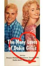The Many Loves of Dobie Gillis 123movies