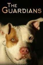 The Guardians 123movies