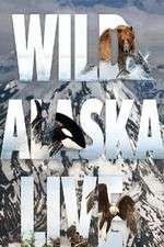 Wild Alaska Live 123movies