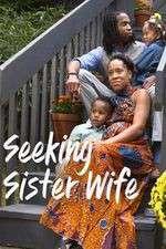 Seeking Sister Wife 123movies