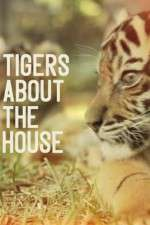 Tigers About the House 123movies